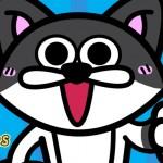 【トイレハイ】ウンチの後は全力ダッシュ!な猫の気持ちと2つの理由