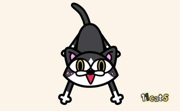 ハチワレ猫のイラスト