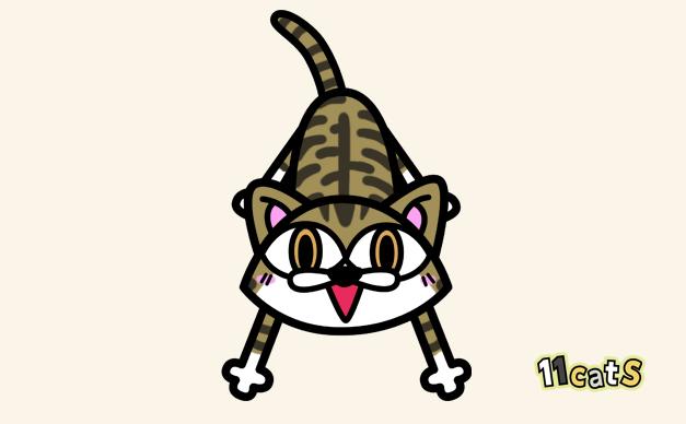 キジトラ白猫のイラスト