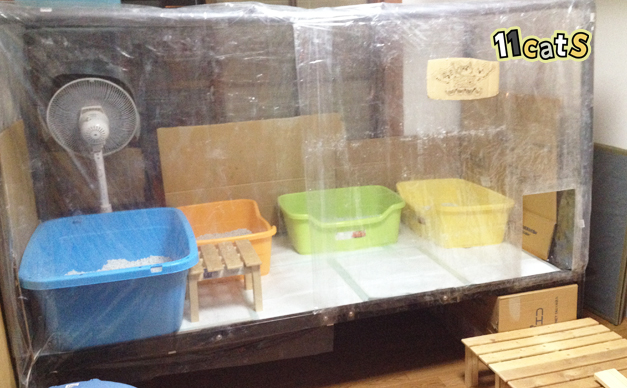 11Catsオリジナル大型猫トイレ